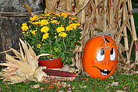 Autumn and the happy Pumpkin