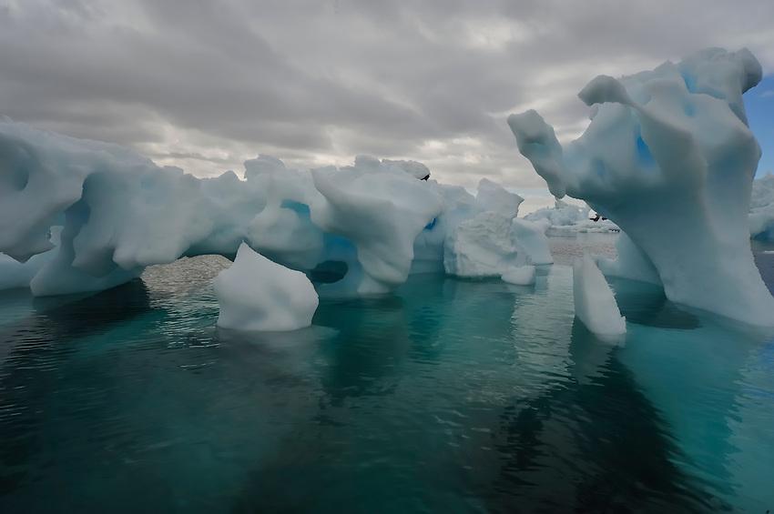 Petrified Forrest - Fantastical ice at Pleneau Island