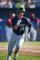 Vermont Lake Monsters outfielder Steven Pallares (14) runs to first during a game against the Batavia Muckdogs August 9, 2015 at Dwyer Stadium in Batavia, New York.  Vermont defeated Batavia 11-5.  (Mike Janes/Four Seam Images)
