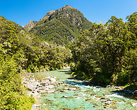 Route Burn and beech forest, Mount Aspiring National Park, Central Otago, UNESCO World Heritage Area, New Zealand, NZ