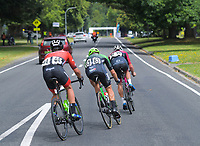 Aaron Gate (right), Mathew Zenovich (centre) and Liam Magennis. Stage One - Lost Lake Loop (Cambridge - Kaipaki - Roto O Rangi - Leamington). 2019 Grassroots Trust NZ Cycle Classic UCI 2.2 Tour from St Peter's School in Cambridge, New Zealand on Wednesday, 23 January 2019. Photo: Dave Lintott / lintottphoto.co.nz