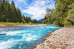 The powerful Hoh River charges down from the high Olympic Mountains. Olympic National Park.  Olympic Penninsula, Washington.  Outdoor Adventure.