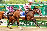 JUNE 16, 2019 : , King for a Day (#3),with Joe Bravo, scores an upset over Maximum Security by winning the Pegasus Stakes, at Monmouth Park, in Oceanport, NJ, June 16, 2019.  Sue Kawczynski_ESW_CSM