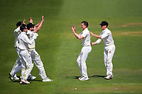 Ollie Newton celebrates a wicket during day one of the Plunket Shield match between the Wellington Firebirds and Auckland Aces at the Basin Reserve in Wellington, New Zealand on Saturday, 14 November 2020. Photo: Dave Lintott / lintottphoto.co.nz