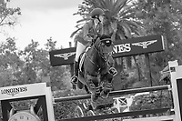 USA-Lillie Keenan rides Agana van her Gerendal Z during the Caixa Bank Trophy. 2021 ESP-Longines FEI Jumping Nations Cup Final. Real Club de Polo, Barcelona. Spain. Sunday 3 October 2021. Copyright Photo: Libby Law Photography