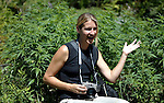 Deddeda sits in the middle of a massive marijuana grow operation on British Columbia crown land on Vancouver Island, BC, while on assignment for the Victoria Times Colonist newspaper. She and repoerter Jack Knox were flown in to the grow op in an RCMP helicopter.