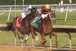 July 18, 2015: Sheer Drama (#5), Joe Bravo up, passes Frivolous (Jon Court up) on her way to winning the Grade I Delaware Handicap, one and 1/4 miles for fillies and mares 3 and upward at Delaware Park in Stanton DE.  Trainer is David Fawkes, owner is Harold L. Queen. Joan Fairman Kanes/ESW/CSM