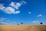 Europa, DEU, Deutschland, Baden-Wuerttemberg, Kraichgau, Bretten ( Neibsheim ), Kraichgauer Huegelland, Agrarlandschaft, Feld, Acker, Sommer, Typische Landschaft, Nach der Getreideernte, Kategorien und Themen, Landwirtschaft, Landwirtschaftlich, Agrar, Agrarwirtschaft, Wetter, Himmel, Wolken, Wolkenkunde, Wetterbeobachtung, Wetterelemente, Wetterlage, Wetterkunde, Witterung, Witterungsbedingungen, Wettererscheinungen, Meteorologie, Bauernregeln, Wettervorhersage, Wolkenfotografie, Wetterphaenomene, Wolkenklassifikation, Wolkenbilder, Wolkenfoto<br /> <br /> [Fuer die Nutzung gelten die jeweils gueltigen Allgemeinen Liefer-und Geschaeftsbedingungen. Nutzung nur gegen Verwendungsmeldung und Nachweis. Download der AGB unter http://www.image-box.com oder werden auf Anfrage zugesendet. Freigabe ist vorher erforderlich. Jede Nutzung des Fotos ist honorarpflichtig gemaess derzeit gueltiger MFM Liste - Kontakt, Uwe Schmid-Fotografie, Duisburg, Tel. (+49).2065.677997, ..archiv@image-box.com, www.image-box.com]