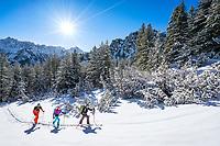 A ski tour through the Pirin Mountains of Bulgaria. Ski touring towards the Vihren Hut on a sunny morning with snow covered trees.