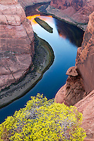 Horseshoe Bend is often captured in its entirety, the whole 180 degree bend.  Here the detail of just half the curve is captured using a vibrant yellow desert flowering bush as foreground.  The brilliant reflection of the sunrise in seen in the distance of the Colorado River.