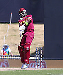 ICC Cricket World cup West indies v Ireland, Saxton Oval Nelson,16th  February, Photographer: Evan Barnes/Shuttersport