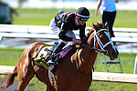 March 28, 2015: I'm a Chatterbox with Florent Geroux up wins the Fairground Oaks / Louisiana Derby Day at the New Orleans Fairgrounds. Steve Dalmado/ESW/CSM