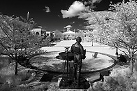The Jefferson Statue looks over the lawn at the Darden School of Business at the University of Virginia in Charlottesville, Va. Photo/Andrew Shurtleff Photography, LLC