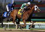 Macha with Rafael Bejarano aboard defeats Eblouissante a half sister to Zenyatta in an allowance race at Santa Anita Park in Arcadia, California on February 13, 2014. (Zoe Metz/ Eclipse Sportswire)