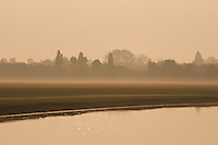 A mist hangs above Oxford's Port Meadow, or Wolvercote Common, just afer sunrise on a spring morning.