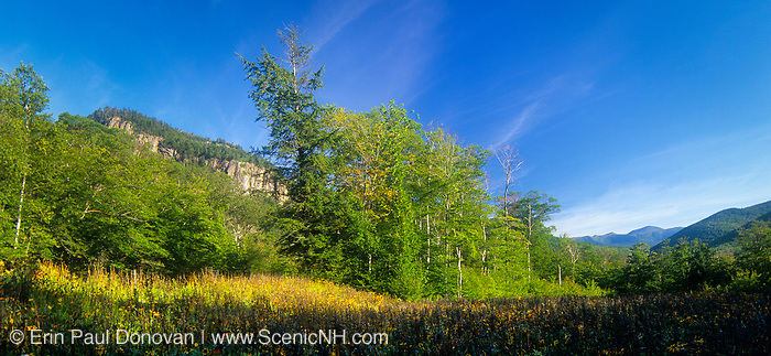 Crawford Notch State Park - Frankenstein Cliff and Mount Washington from a scenic view point along Route 302. Located in the White Mountains, New Hampshire USA. The Maine Central Railroad travels under this cliff