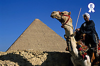 Egyptian man standing on camel in front of Khephren pyramid, Giza, Cairo, Egypt (Licence this image exclusively with Getty: http://www.gettyimages.com/detail/81867331 )
