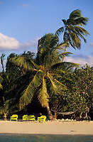 Iles Bahamas /Ile d'Andros/South Andros : la plage et les palmiers de l'Eco-Lodge-Tiamo Resort // Bahamas Islands / Andros Island / South Andros: the beach and palm trees of Eco-Lodge-Tiamo Resort