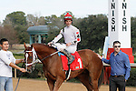 The winner of race #1 Congenial with Robby Albarado aboard. (Justin Manning/Eclipse Sportswire)