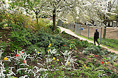 Meanwhile Gardens, a community-run open space in North Kensington, London.