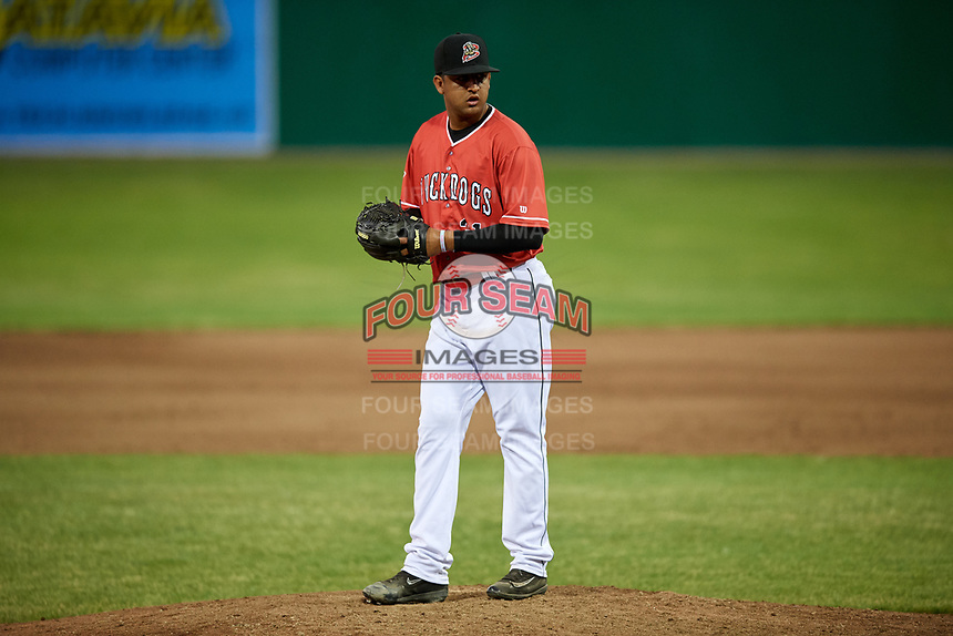 Batavia Muckdogs relief pitcher Jeremy Ovalle (31) gets ready to deliver a pitch during a game against the Williamsport Crosscutters on June 21, 2018 at Dwyer Stadium in Batavia, New York.  Batavia defeated Williamsport 6-5.  (Mike Janes/Four Seam Images)