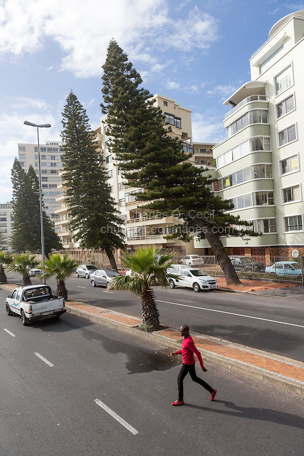 South Africa, Cape Town, Sea Point.  Trees Bent Seaward by the Wind Bouncing off High-rise Apartment Buildings shows that Sea Point is a windy place.
