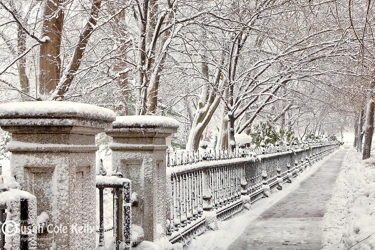 Fresh snow in the Boston Public Garden, Boston, MA, USA