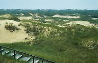 Insel Amrum, Holzbohlenweg führt durch Dünen, Dünenlandschaft, Nordsee, Schleswig-Holstein