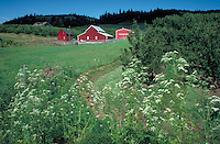 red and white barn structure in pastoral field.