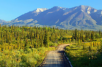 The Nabesna Road, Wrangell-St Elias National Park, Alaska