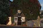 The Village Pub. Royal Oak, Cerne Abbas, Dorset. England 1990s 1991