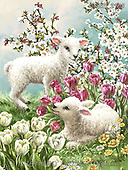 Dona Gelsinger, EASTER, OSTERN, PASCUA,sheep,sheeps, paintings+++++,USGE2108,#e#, EVERYDAY