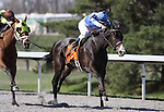 Orchestrator with Alex Solis up wins The Bourbonette Oaks at Turfway Park. 03.27.2010