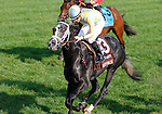 """October 04, 2015: Airoforce and jockey Julien Leparoux win the 25th running of the Dixiana Bourbon (Grade 3) """"Win and You're In Juvenile Turf Division"""" $250,000 at Keeneland for trainer Mark Casse and owner John Oxley.  Candice Chavez/ESW/CSM"""