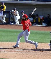 Brandon Marsh - Los Angeles Angels 2021 spring training (Bill Mitchell)
