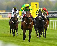 Equestrian 2019
