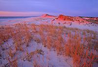 Sand Dunes, New Jersey
