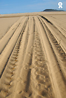 South Africa, Saint-Lucia wetland park, tracks in sand, close-up (Licence this image exclusively with Getty: http://www.gettyimages.com/detail/200482584-001 )