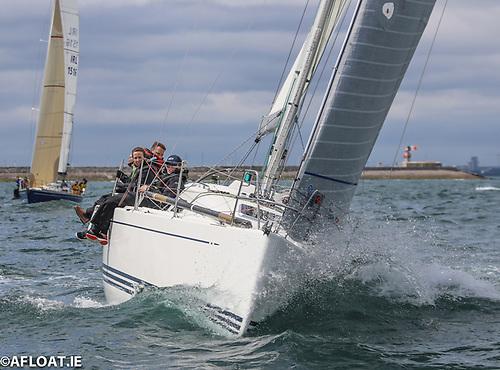 Paul Tingle's X34 Alpaca