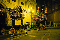 CARRIAGE RIDES are available in the PLAZA surrounding SEVILLA'S CATHEDRAL - SPAIN