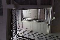"""Das ehemalige St. Josefsheim Waldniel-Hostert, Fuehrung durch das Heim mit der Kentschool Security Group, Treppenhaus, niemand, [das Josefsheim ist ein ehemaliges Franziskaner-Heim fuer Kinder mit Behinderung, nach 1937 war es die Kinderfachabteilung der Provinzial Heil- und Pflegeanstalt, in dieser Zeit wurden ca. 100 Kindern mit Behinderung durch die Nationalsozialisten ermordet, von 1963 bis 1991 britische Kent-School], heute leerstehende Ruine, [Treffpunkt fuer """"Geisterjaeger""""], lost place, lost places, moderne Ruine, Verfall, verfallen, Gedenkstaette, Euthanasie, Kindereuthanasie, Naziverbrechen, Verbrechen, Behinderung, Nationalsozialismus, Nazi-Zeit, Drittes Reich, Geschichte, Historie, Josefs-Heim, Europa, Deutschland, Nordrhein-Westfalen, Viersen, Schwalmtal, 08/2013<br /> <br /> Engl.: Europe, Germany, North Rhine-Westphalia, Viersen, Schwalmtal, former St. Josefsheim Waldniel-Hostert, guided tour through the home with the Kentschool Security Group, building, interior view, staircase, memorial site, euthanasia, mercy killing, crime, disability, National Socialism, Third Reich, history, the Josefsheim is a former home managed by Franciscan monks for disabled children, after 1937 the National Socialists killed approx. 100 disabled children there, from 1963 - 1991 British Kent-School, August 2013"""