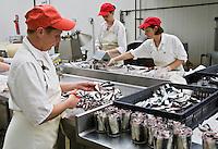 """Europe/France/Bretagne/29/Finistère/ Saint-Guénolé: Conserverie """"Océane alimentaire """" Préparation des bocaux de sardines à l""""huile"""