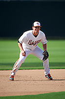 Bowie Baysox third baseman Drew Dosch (11) during the second game of a doubleheader against the Akron RubberDucks on June 5, 2016 at Prince George's Stadium in Bowie, Maryland.  Bowie defeated Akron 12-7.  (Mike Janes/Four Seam Images)