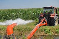 - irrigation of corn  fields in Lodi province ..- irrigazione dei campi di mais in provincia di Lodi