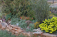 Rock garden with dry laid stone reatining wall raised bed; David Salman New Mexico xeric rock garden by walled courtyard