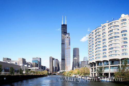 The Willis Tower from the Chicago River