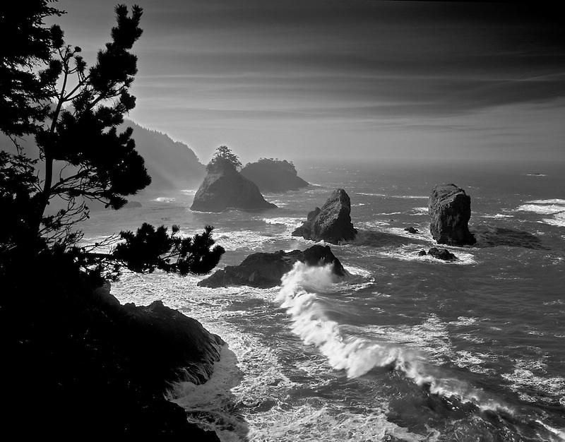Waves and rocks at Boardman State Park, Oregon.