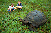 Kids watching a giant tortoise. Galapogas Islands, Ecuador.