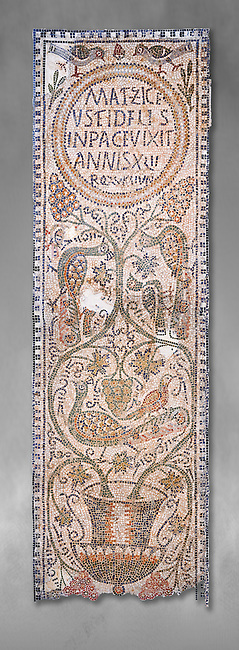 The Christian memorial funerary mosaic of Matziceus, a Libyan, with the inscription reading: 'the faithful Matziceus lived in peace for 42 years, rested (died) on the fifteenth of the calends of June'.<br /> <br /> The panel is decorated with vines which grow out of a cantharus, a Greek style drinking cup, which represents the fountain of life.<br /> <br /> 5th century Eastern Byzantine Roman mosaic from the Parish church of Demna, left AisleBardo Museum, Tunis, Tunisia. Grey background