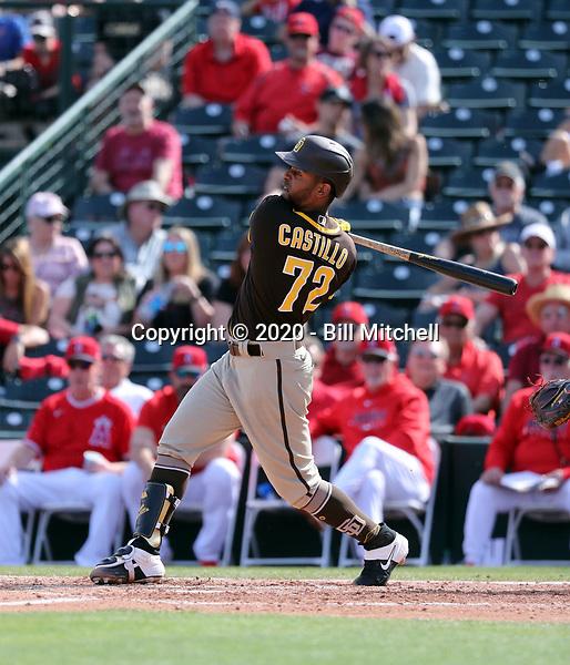 Ivan Castillo - San Diego Padres 2020 spring training (Bill Mitchell)